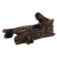 National GeographicTM Rainforest Hideaway Reptile Ornament