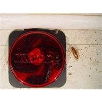 Bayer 12 Maxforce FC Cockroach German Roach Pest Control Bait Stations .05% Fipronil