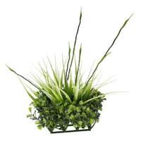 Hagen Fluval Chi Boxwood and Tall Grass Aquarium Ornament