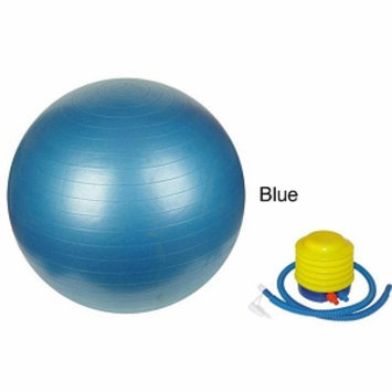 Sivan Health And Fitness 75cm Anti-burst gym ball