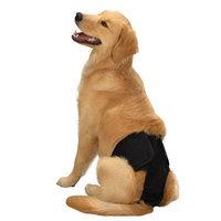 Clean Go Male Dog Pup Pants