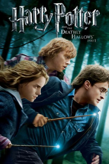 Warner Home Video Harry Potter Deathly Hallows Pt.1