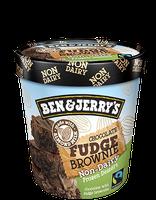 Ben & Jerry's® Chocolate Fudge Brownie Non-Dairy Frozen Dessert