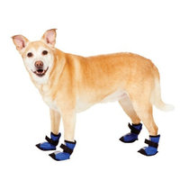 Fashion Pet Blue Essential Dog Boots Extra Extra Small