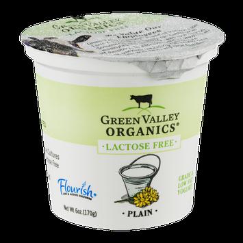 Green Valley Organics Lactose Free Yogurt Plain