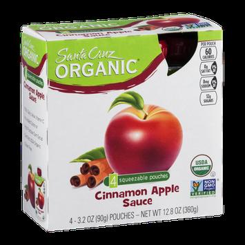 Santa Cruz Organic Cinnamon Apple Sauce Squeezable Pouches - 4 CT