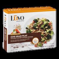 Luvo Nine Grain Pilaf with Sweet Chile Beef & Steamed Vegetables