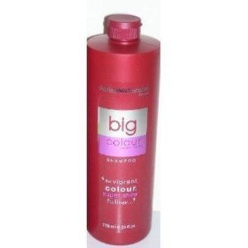 Charles Worthington Big Hair Salon Shine Shampoo 25 Oz.