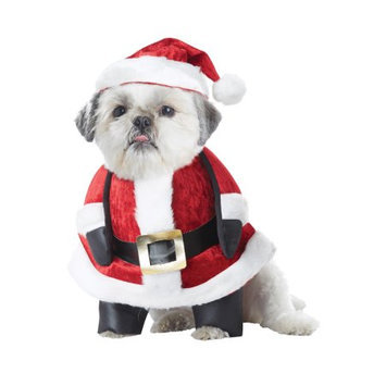California Costume Collections Santa Pup Dog Costume
