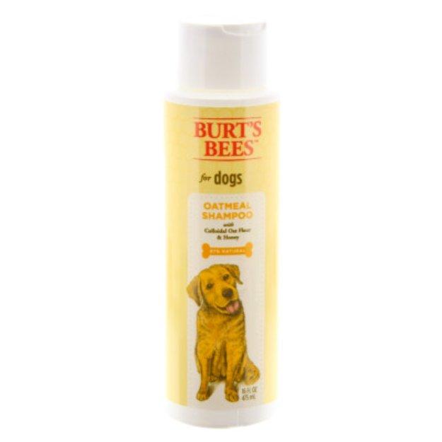 Burt's BeesTM Oatmeal Dog Shampoo