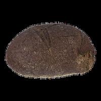 Bakery Pumpernickel Boule Round