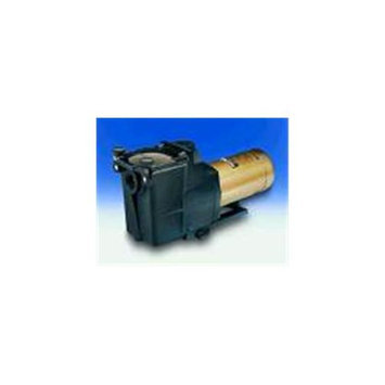 HAYWARD Hayward SPX1610Z1M 1. 5 Hp Threaded Shaft Max Rated Gold Motor