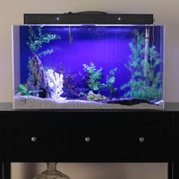 Advance Aqua Tanks Clear For Life Rectangle Aquarium Black, Size: 10-Gal (20L x 10W x 12H in.)