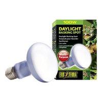 Hagen Exo Terra Sun-Glo Basking Spot Lamp