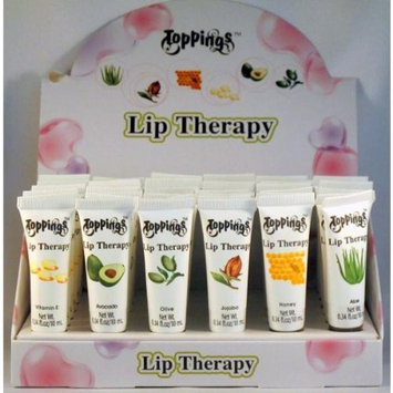 DDI Fragrance Free Natural Pure Lip Therapy Lip Balm Case Pack 144 - 664583