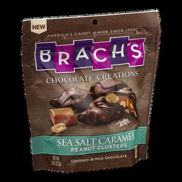 Brach's Chocolate Creations Sea Salt Caramel Peanut Clusters