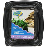 Cosmic OurPets Kitty Cat Family Grass