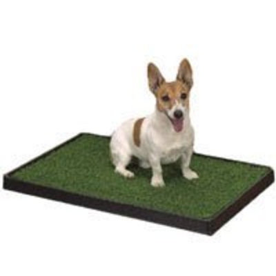 Clean Go Pet Indoor Dog Potty, 20-Inch