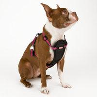 KONGA Reflective Dog Harness