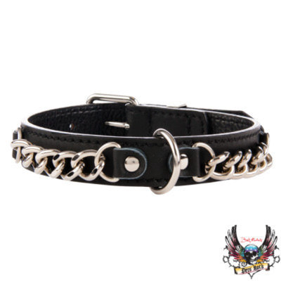 Bret Michaels Pets RockTM Chain Dog Collar