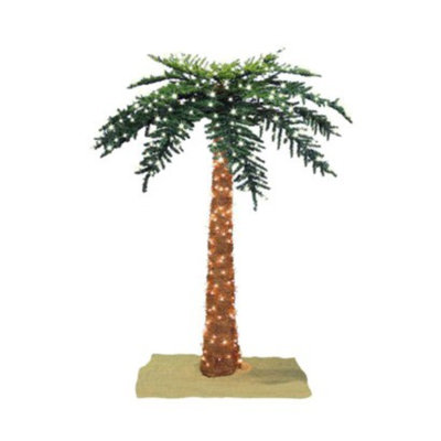 Sterling Inc Lighted Royal Palm Tree - 6'