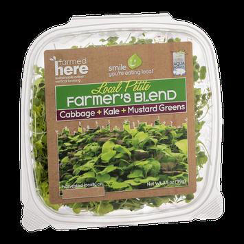 FarmedHere Local Petite Farmer's Blend Cabbage +Kale + Mustard Greens