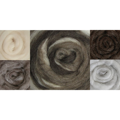 Wistyria Editions NOTM062302 - Wool Roving 12