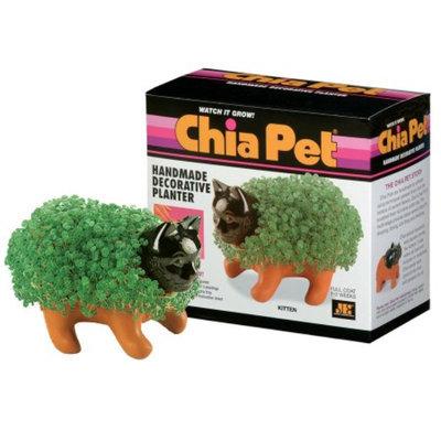 CHIA Pet Kitten