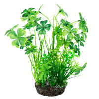 National GeographicTM Landscape Clover Aquarium Plant