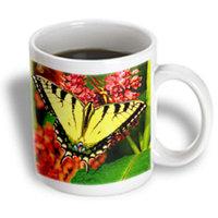 Recaro North 3dRose - Butterflies - Tiger Swallow Tail - 11 oz mug