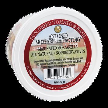 Antonio Mozzarella Factory Marinated Mozzarella Sun-Dried Tomato & Basil
