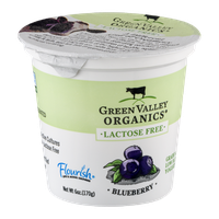 Green Valley Organics Lactose Free Low Fat Yogurt Blueberry