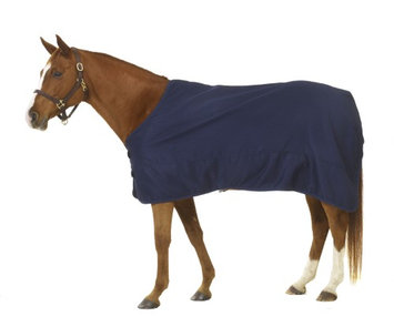 Centaur ThermaDry Stable Sheet 72