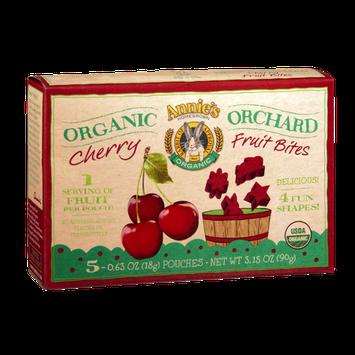 Annie's® Homegrown Organic Orchard Cherry Fruit Bites