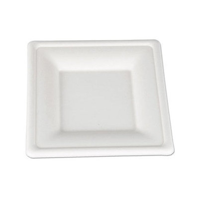 Horizon Display SCT ChampWare Molded Fiber Square Plates