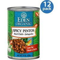 Eden Organic Spicy Pinto Beans