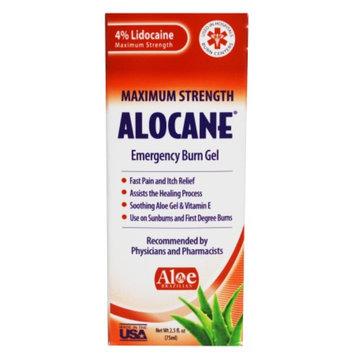 Alocane Maximum Strength Emergency Room Burn Gel, 2.5 fl oz