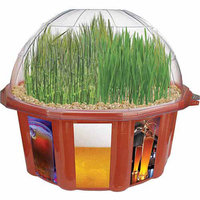 Dunecraft Beer Garden Plant Kit Ages 4 and up