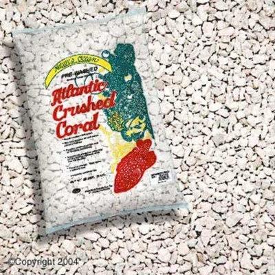World Wide Imports Worldwide Imports AWWA1035 Atlantic 4-Crush Coral, 20-Pound