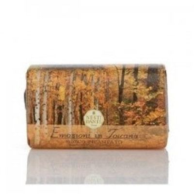 Shady Day NESTI DANTE Emozioni di Toscana, Enchanting Forest Soap 250 g