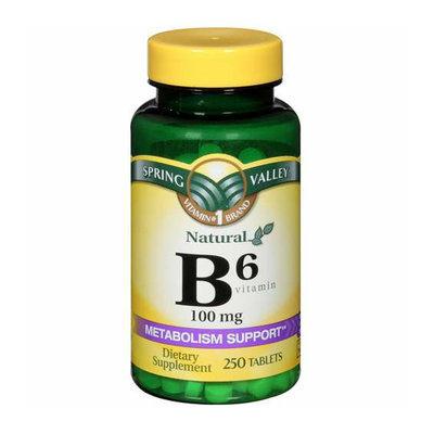 Spring Valley Vitamin B-6 100mg