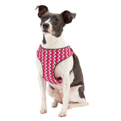 Top PawA Dot Step-In Dog Harness