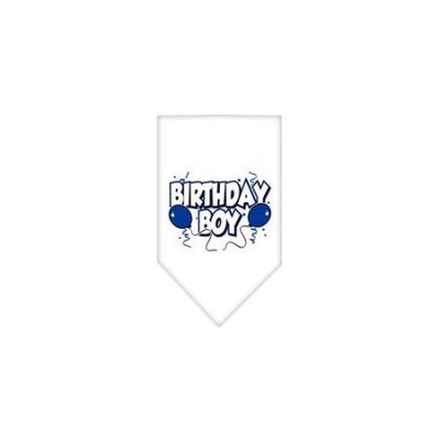 Ahi Birthday Boy Screen Print Bandana White Large