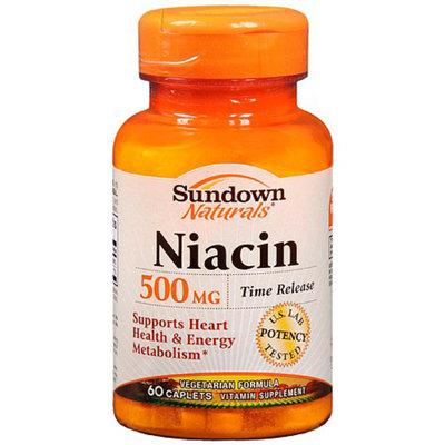 Sundown Naturals Niacin 500 mg Dietary Supplement Caplets