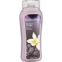 Bodycology Blackberry Vanilla Foaming Body Wash