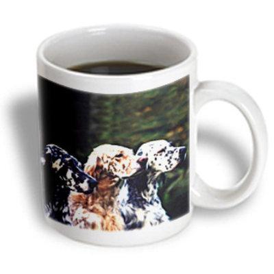 Recaro North 3dRose - Dogs English Setter - English Setter - 15 oz mug