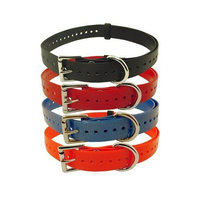Tri Tronics Collar with Roller Buckle and Nickel Hardware