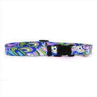 Yellow Dog Design MOD100TC Mod Standard Collar - Teacup