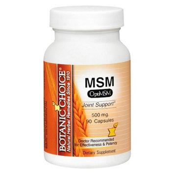 Botanic Choice MSM 500 mg Dietary Supplement Capsules