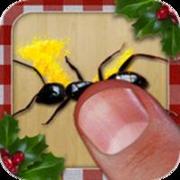 Gustavo Schvartsman Ant Smasher Christmas